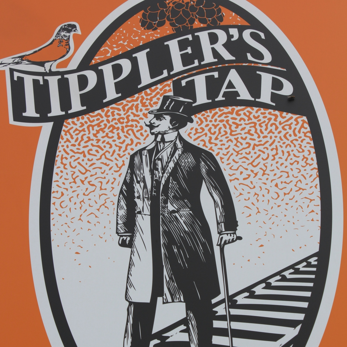 Lonely Pint: A Brisbane Beer Travel Guide – Tippler's Tap